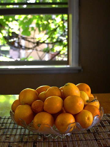A big bowl of oranges sits near the window.
